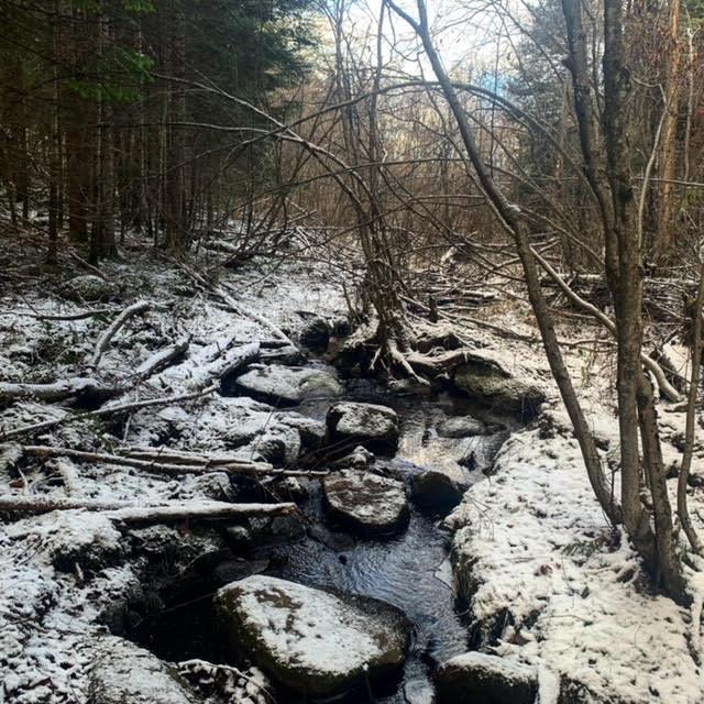 Creek Bancroft